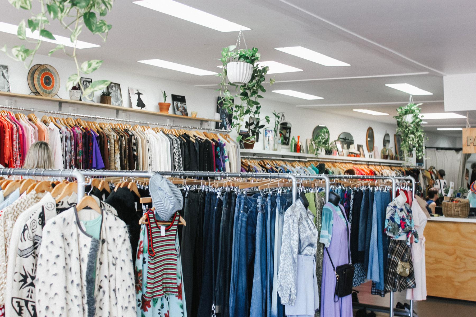 BSWA-Charity-Shop